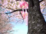 しだれ桜ミク