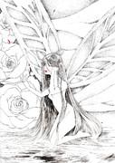 アルビノの薔薇