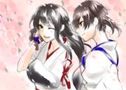 赤城さんと加賀さんお花見