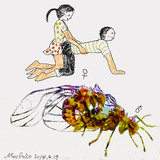 メスがペニスを持つ昆虫が見つかる 雌雄逆転を描いてみた。