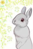 ウサギ、ちょっと描き足し