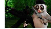 密林に潜むゲリラ兵.amazon