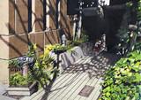 木漏れ日 新宿区大京町