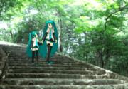 新緑の嵐山公園でお散歩