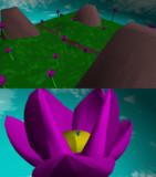 flower stage
