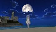 【MMO】カモメ町、夜の砂浜
