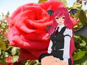 閑話休題(ちょこあと薔薇)憧れの美人さんに来てもらいました。