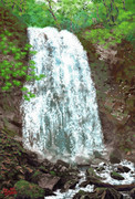 新緑の不動滝!