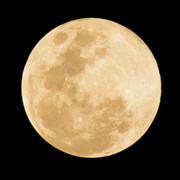 【素材】満月【フリー】