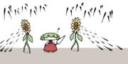 向日葵の種蒔き