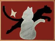 黒猫の冷徹