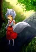 木陰の銀狐