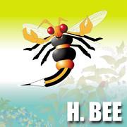 H.BEE(エイチビー)