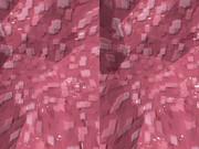 立体視画像3
