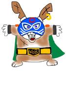 チャンピオンマスク