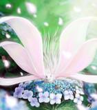 レイランの花