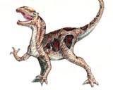 色鉛筆で恐竜を描いたよ。