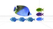 魚セット01
