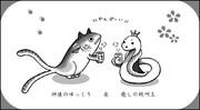 猫マグロさん&鎌首さん