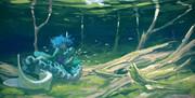 わかさぎ姫と稚魚