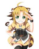 フロニャルドの虎っ娘