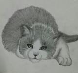 前に描いた猫さん