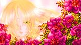 パルスィと赤い花