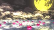 蓮の花ステージ配布