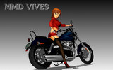 VIVES・・・