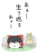 KNN姉貴とMUR猫