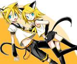 リンレン猫