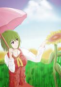 夏の向日葵畑にて