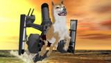 駆逐艦 野犬
