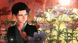 秋桜と兵長