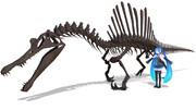 スピノサウルス全身骨格モデル配布