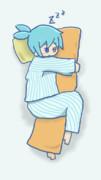 抱き枕シグさん