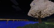 和風な橋と帝丹櫻