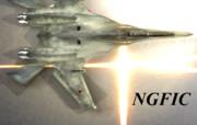 NGFIC