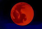 [背景素材]紅い月