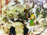 森の探索2
