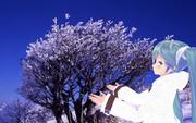 ミクさんと樹氷を見に来ました。6