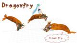 【MMD】Dragonfry