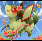 フライゴンとグラシデアの花