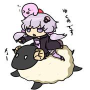 ゆかりと羊と星野