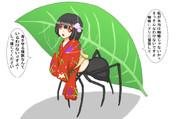 蟻っぽい蜘蛛