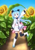 おっきな向日葵畑で見つけた子!