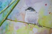 野鳥その3