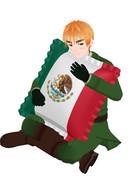 イギリスとメキシコのクッション