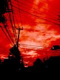 赤い空と信号機