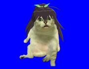 我那覇MUR猫